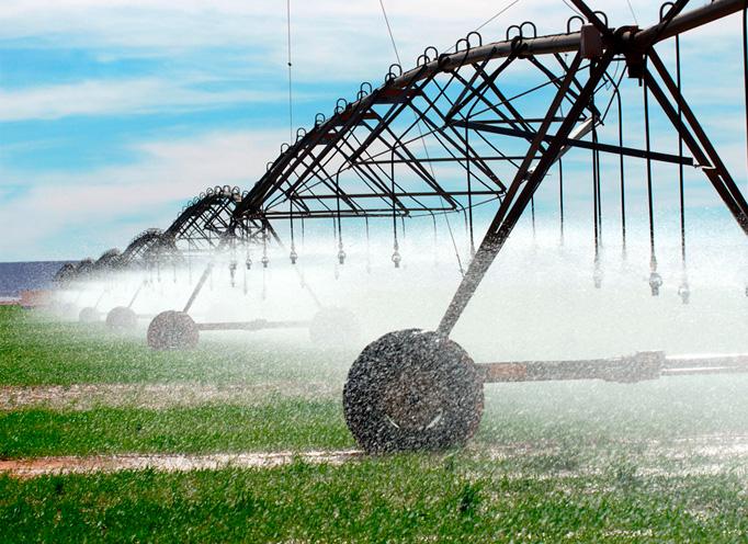 Agricultura Regadío